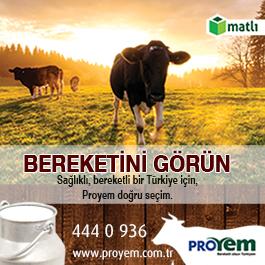 Proyem
