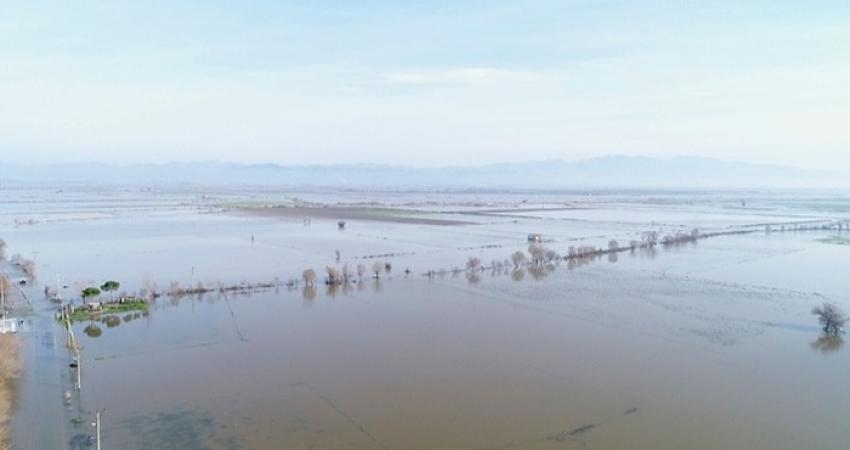 Aydın'da 100 bin dönüm tarım arazisi sular altında kaldı
