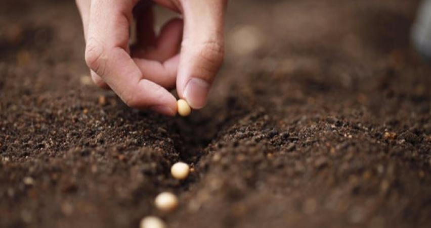 76 ülkeye tohum ihracatı