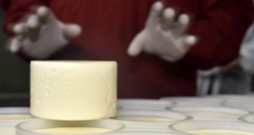 Süt ürünlerine Ağustos-Ekim döneminde yüzde 16'yı bulan zam geldi