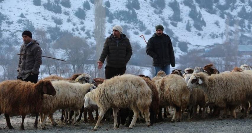 Akşarlılar kapalı hayvan pazarı istedi