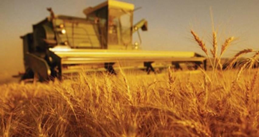 Çiftçilere 14.5 milyar TL nakit desteği