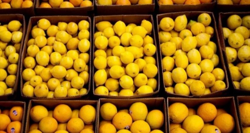 Gürcü tarım ürünlerine kota kalktı