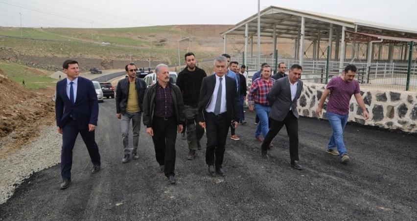 Cizre'de hayvan pazarı faaliyete başlıyor