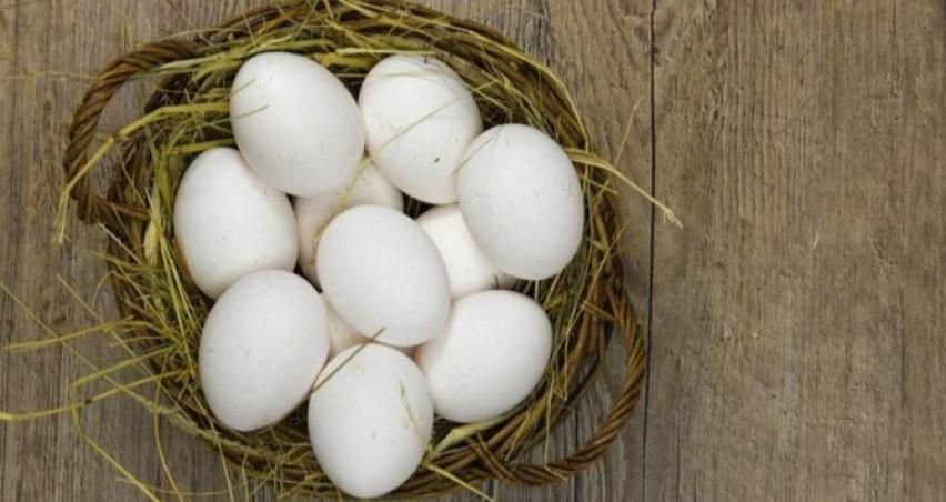Kodlara göre yumurtalar ne anlama geliyor?