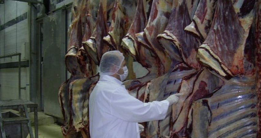 Ukrayna'dan et ithaline izin çıktı