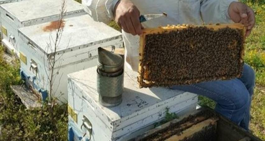 Arıcılar destekleri yetersiz buldu