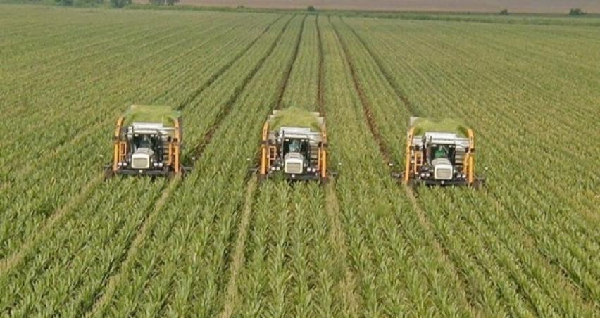 Tarım ÜFE yüzde 0,55 azaldı