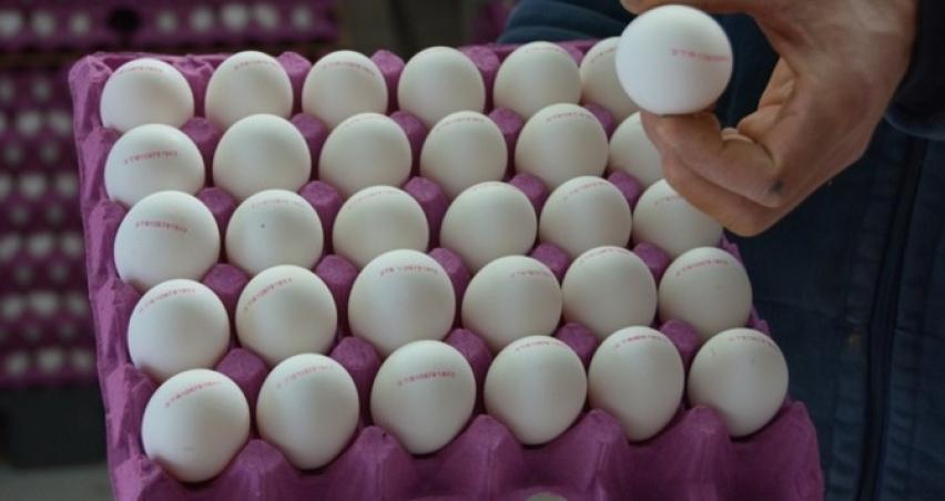 Yumurtadaki fiyat artışı haberlerine yalanlama geldi