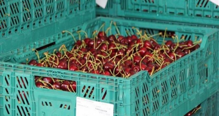 Rusya ile meyve krizi büyüyor