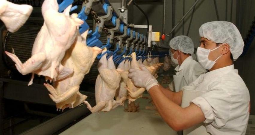 'Beyaz ete 9 ayda yüzde 200'ün üzerinde zam yapıldı'