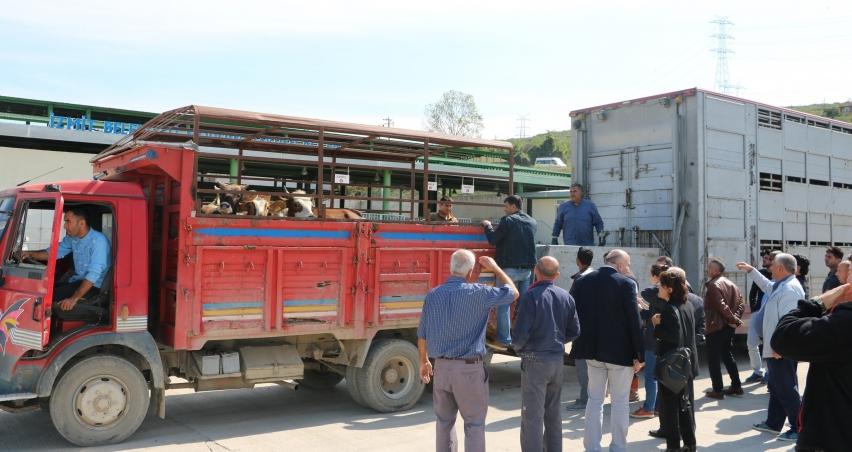232 genç çiftçiye 6 milyon 960 bin TL hibe desteği verildi