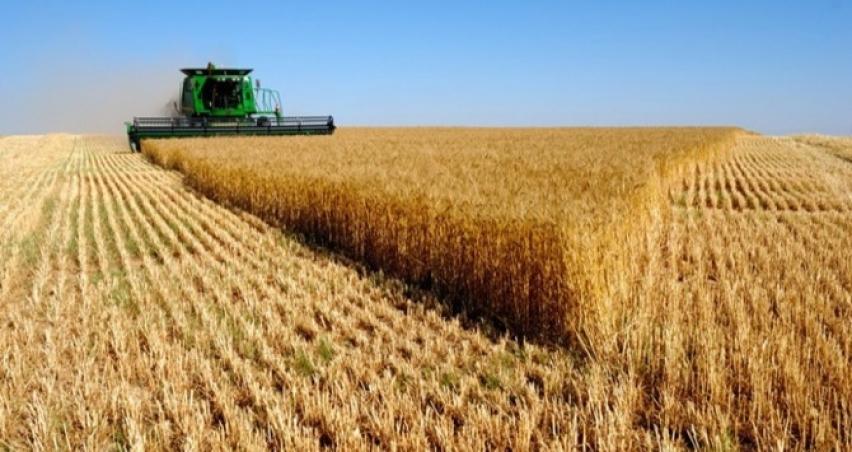 TZOB'dan çiftçiye 'ecrimisil' uyarısı