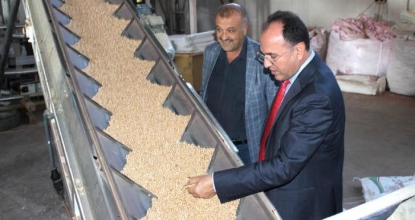 Yerli tohum firmasından yerli tohum ihracatı başarısı
