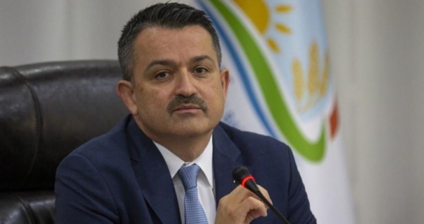 Türkiye'nin buğday üretimi kendi kendine yeterli