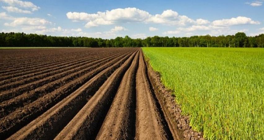 Çiftçiye ödeme müjdesi