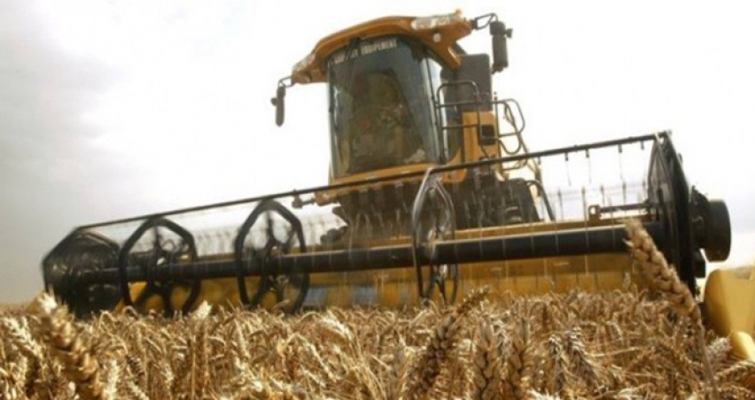Tarım-ÜFE, 2018'de yüzde 16 arttı