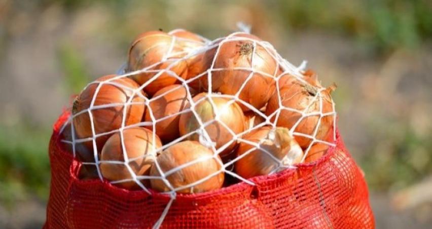 Sıfır gümrükle kuru soğan ithal edilecek