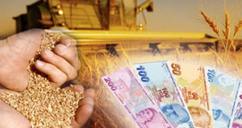 Dane mısır, hububat ve yem destekleme ödemeleri başladı