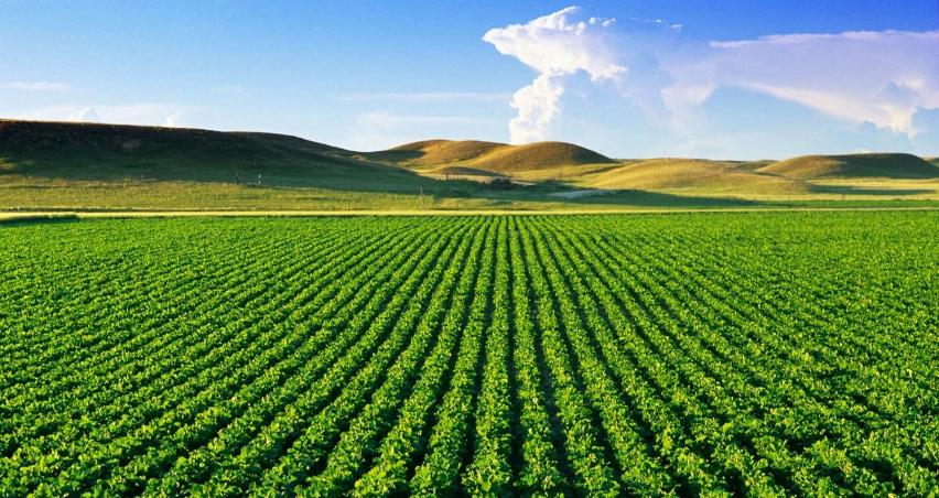 Çiftçiye 250 milyon Euro'luk hibe paketi