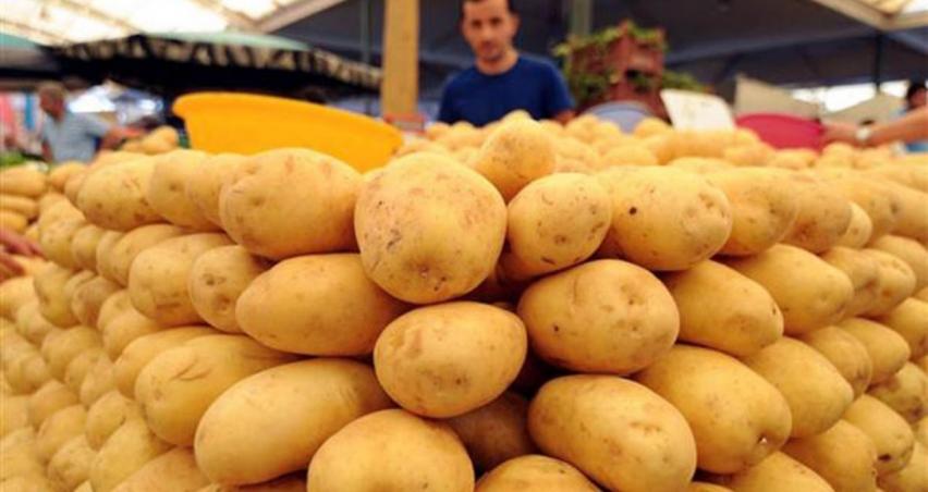 Patateste sıfır gümrük vergisi süresi uzatıldı