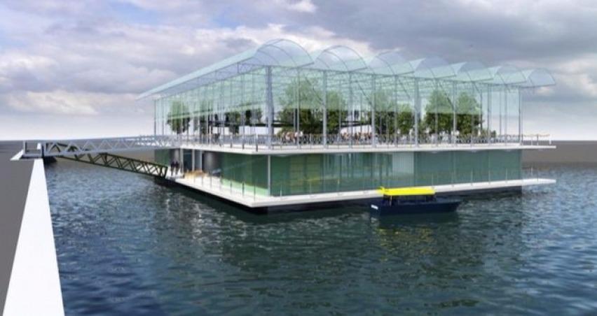 Dünyanın ilk yüzen çiftliği Hollanda
