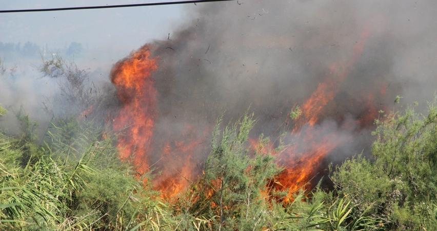 Edremit'teki yangın 4 saat sonra söndürüldü