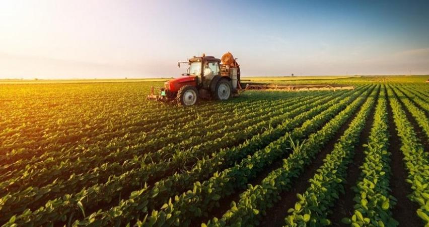 Ekonomi küçülürken, tarım nasıl büyüdü?
