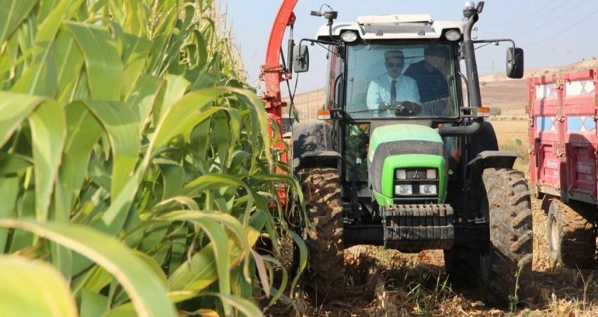 Vali silajlık mısır hasadına başladı