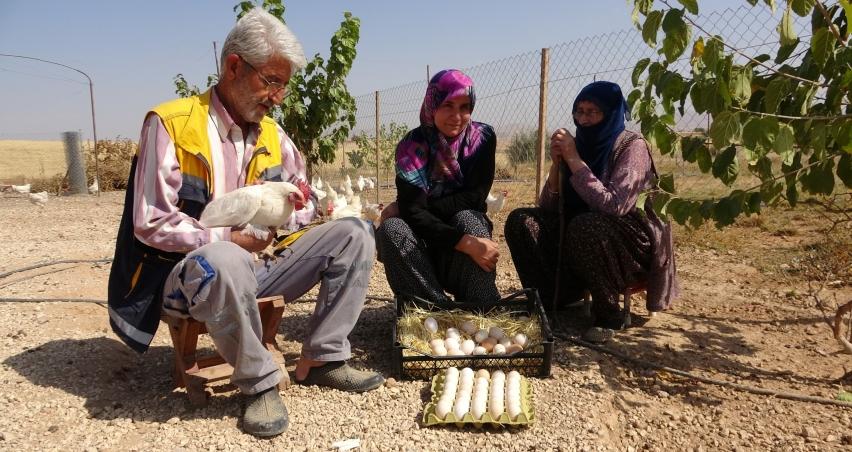 Hobiyi, çiftliğe çevirince para kazanmaya başladılar