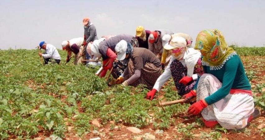 Ölüm işçileri