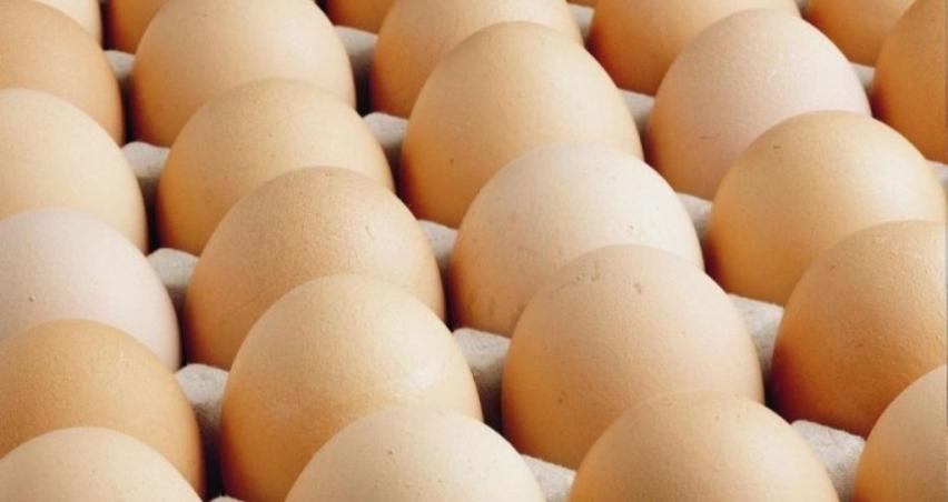 Yumurta krizini fırsata çevirenler ve yumurta tozu ithalatı