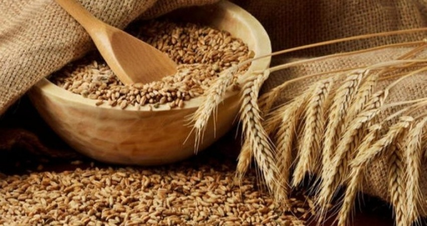 Buğday ithalatında 7.9 milyon tonla tarihi rekor kırıldı