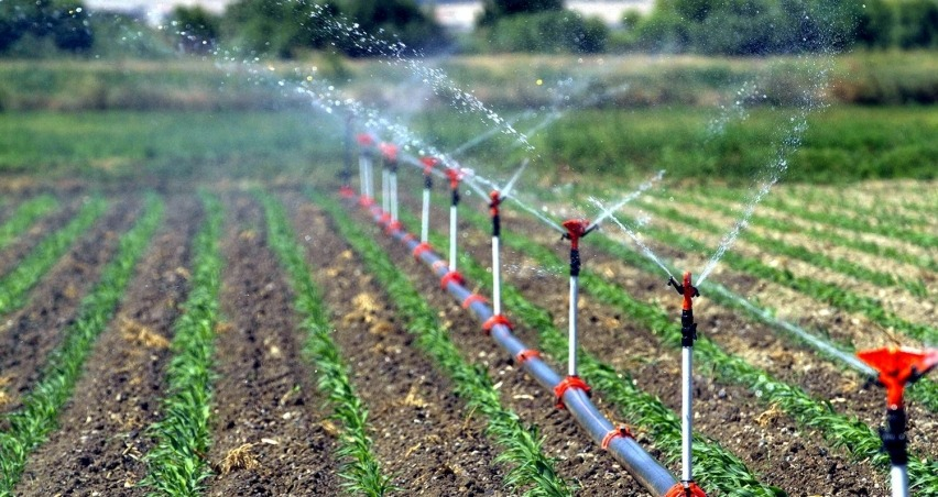 Sulu tarım ülke ekonomisine 68 milyon lira katkı getirdi