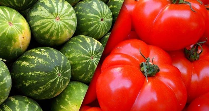 İstanbul hallerinde geçen yıl en çok karpuz ve domates satıldı