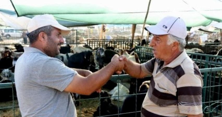 Hayvan pazarlarında tokalaşma tarihe karışıyor