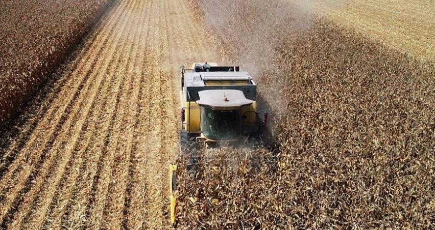 Tarım ÜFE aylık yüzde 0,45 arttı