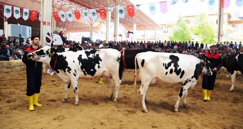 Teke Yöresi 3. Tarım ve Hayvancılık Fuarı'na destek
