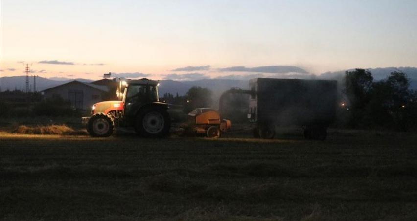 Sıcaktan bunalan çiftçiler hasatlarını gece yapıyor