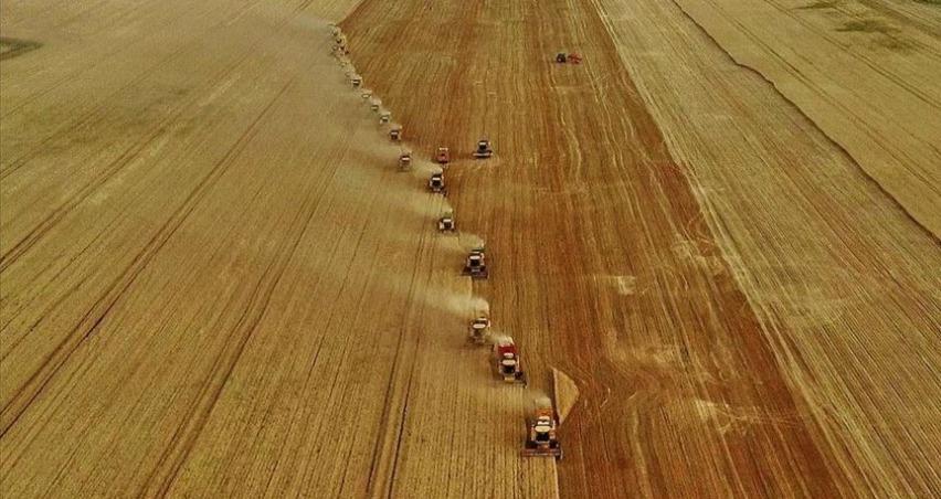 Türkiye'nin tarımını doğru tanımlamak