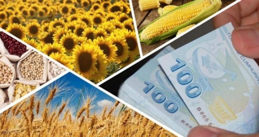2020 tarım destekleri ne zaman açıklanacak?