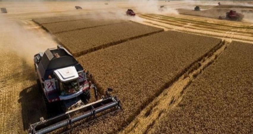 Rusya milli politika ile tarımda mucizeler yaratıyor