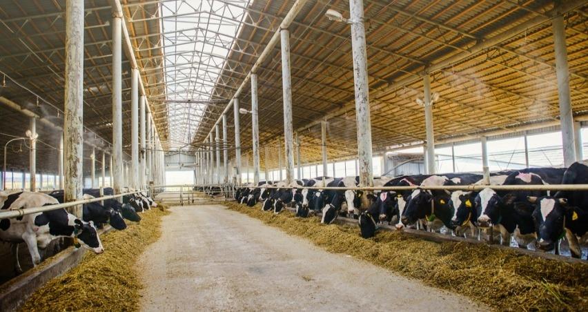 Hayvancılık işletmelerine yönelik yatırımlara verilecek hibe desteği Resmi Gazete'de