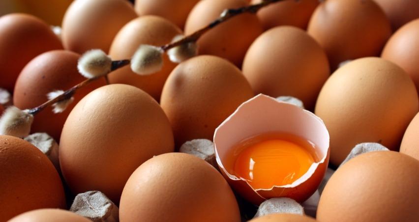 Barış mesajı yumurta ihracatını şaha kaldırdı