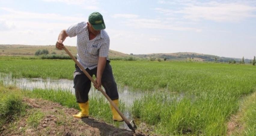 Çiftçilere yeni zorunluluk!