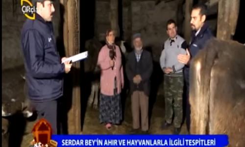 Ahırım Şahane Çankırı-Aşağıpelitözü