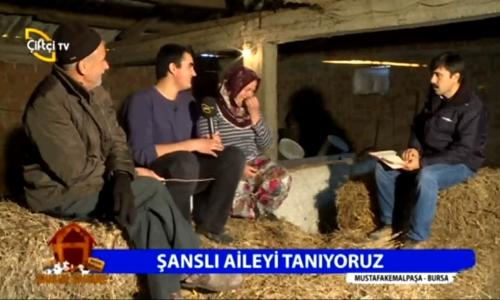 Ahırım Şahane Bursa-Mustafakemalpaşa