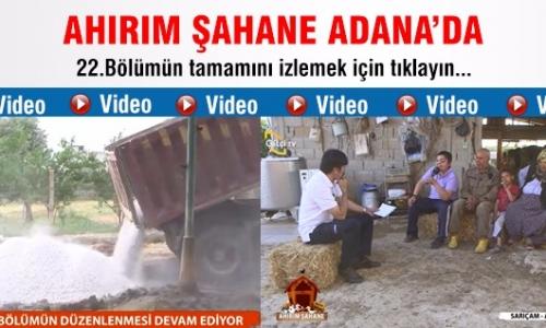 Ahırım Şahane / 22.Bölüm Adana - Sarıçam