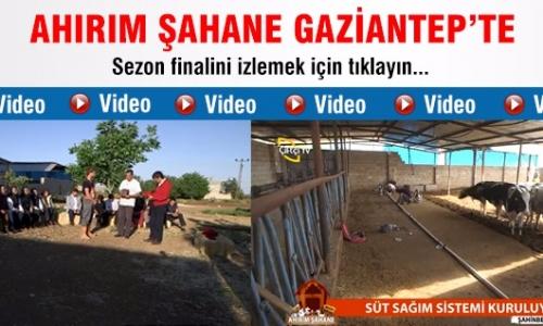 Ahırım Şahane / 25.Bölüm Gaziantep - Şahinbey