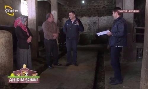 Ahırım Şahane 2.Sezon 8.Bölüm